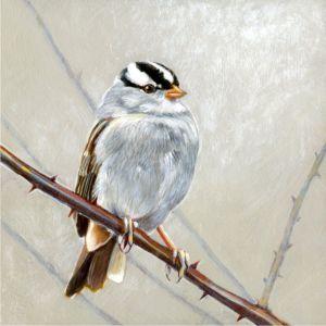 w-c-sparrow